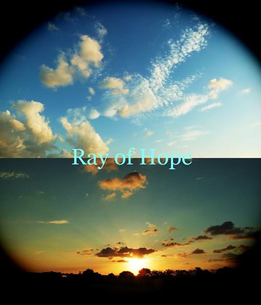 希望という名の光
