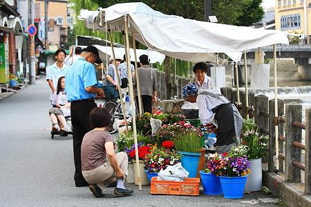 2010.08.20 高山 宮川朝市 花屋