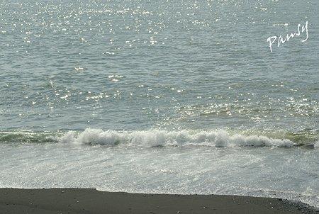 西湘の海・・4
