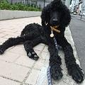 Photos: 手足、長~~!