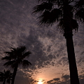 Photos: Dawn of Island