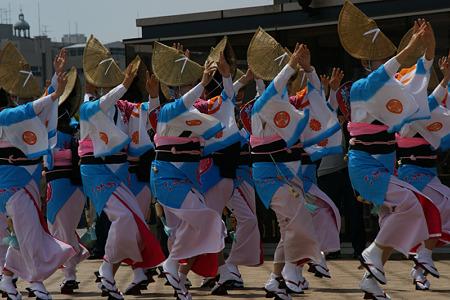 阿波踊り100503-365