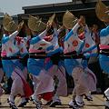 Photos: 横浜の阿波踊り連!