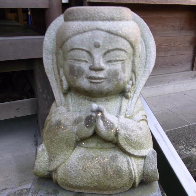 【東京|神社仏閣】 大円寺 (86)