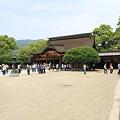 写真: 100521-69飛梅と本殿