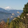 Photos: 101215-67もみじ台からの富士山