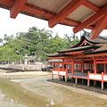 Photos: 110516-53厳島神社