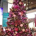 Photos: Merry X'mas♪