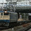 写真: pf1041-20100201