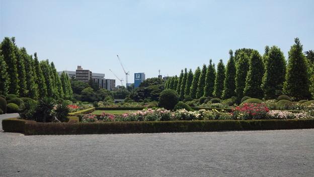 Photos: 西洋庭園