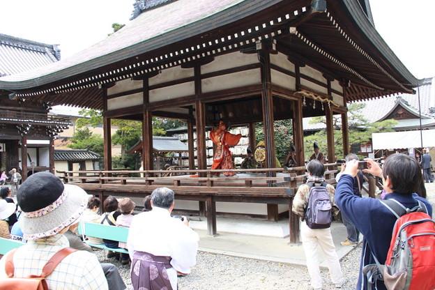 梅宮大社 桜祭 舞楽奉納