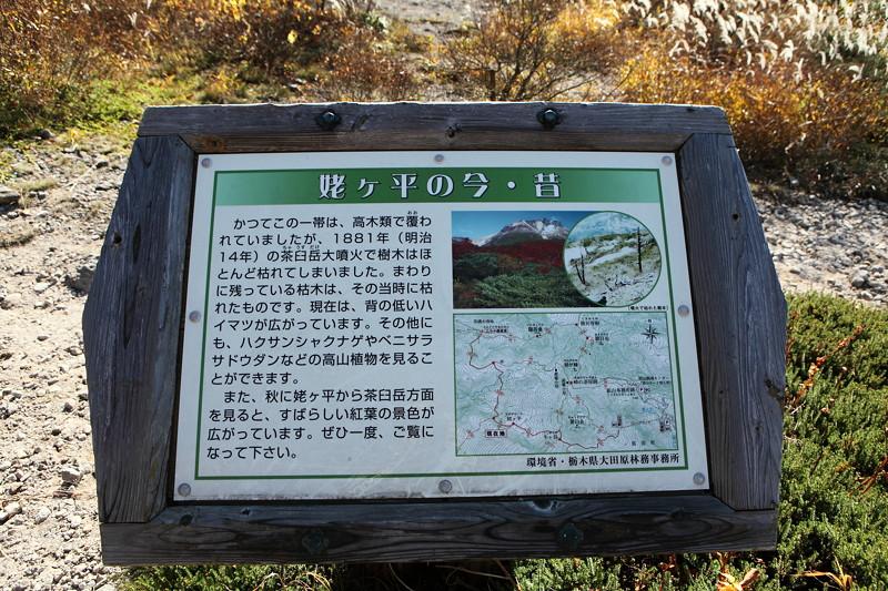 IMG_8919那須 茶臼岳 姥ヶ平の紅葉