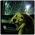 20120610 洗車中、車内