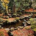 高源寺 紅葉(8) 落ち葉とベンチ