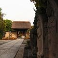Photos: 朝の寺