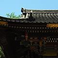 Photos: 楼門