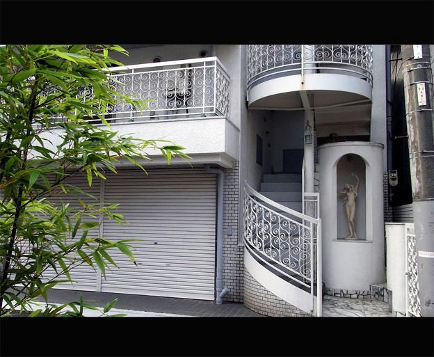 Photos: 下町ビーナス
