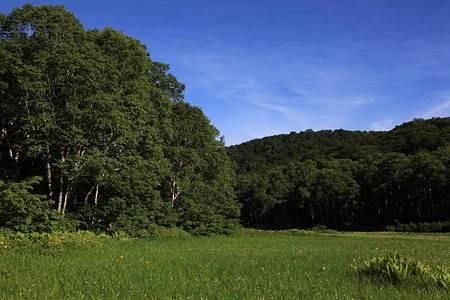 志賀高原ツーリング_20100719-073128北ドブ湿原
