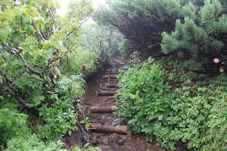 利尻岳-20100814-085010