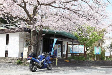 20110410富戸駅01