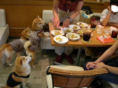 早く食べたい!