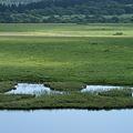 Photos: 八島が池1