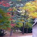 Photos: 宗廟への入り口